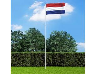 Steag Olanda si stalp din...
