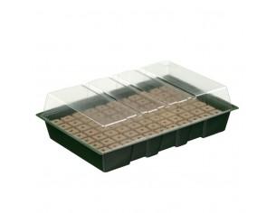 Nature Mini kit propagator,...
