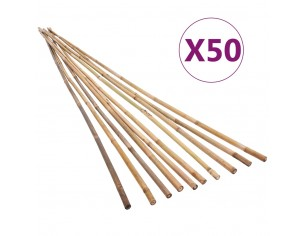 Bete de bambus de gradina,...