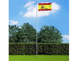 Steag Spania si stalp din...