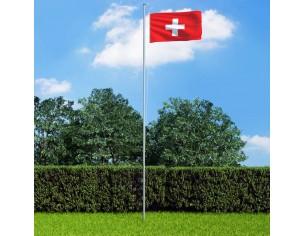 Steag Elvetia si stalp din...