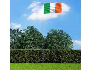 Steag Irlanda si stalp din...