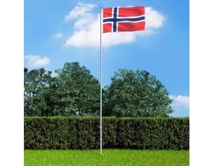 Steag Norvegia si stalp din...