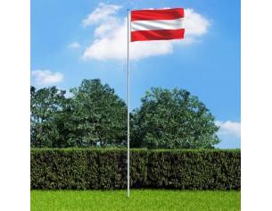 Steag Austria si stalp din...