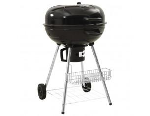 Gratar barbecue pe carbuni...